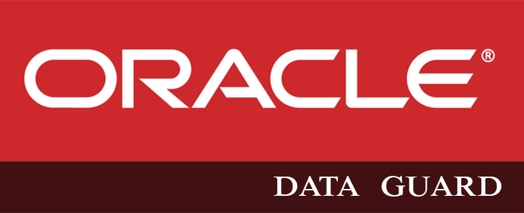 ORACLE DATA GUARD Training in Dehradun